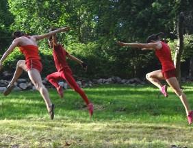 Quarry-Dance-4-gazelles-leaping.jpg